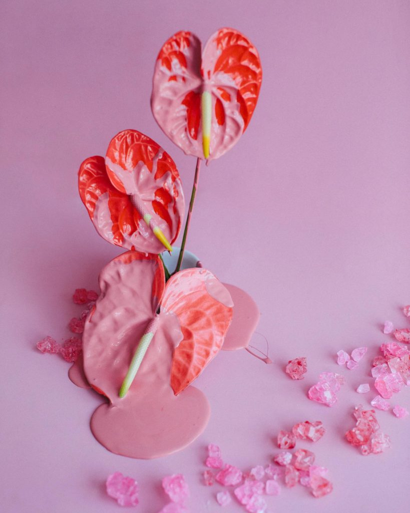 Red flowers with paint dripping and rock candy against a pink background in NYC